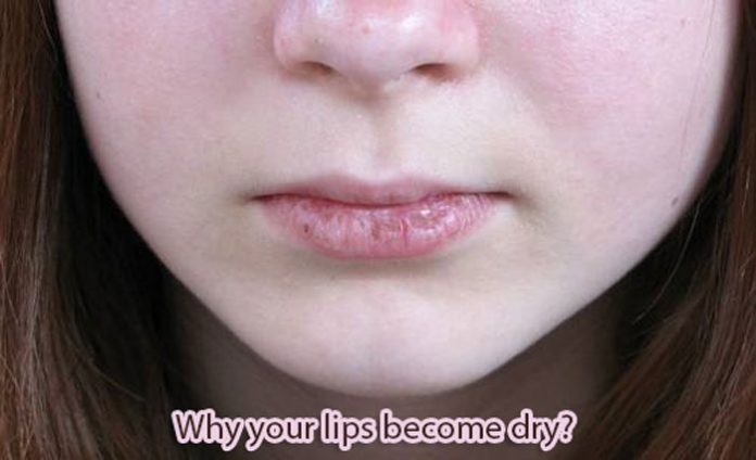What causes dry lips